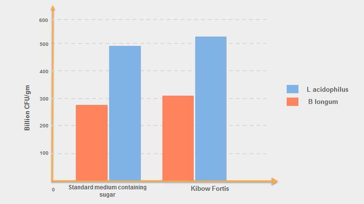 Kibow Fortis - Lab Studies 1