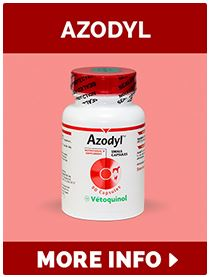 Azodyl Single Bottle